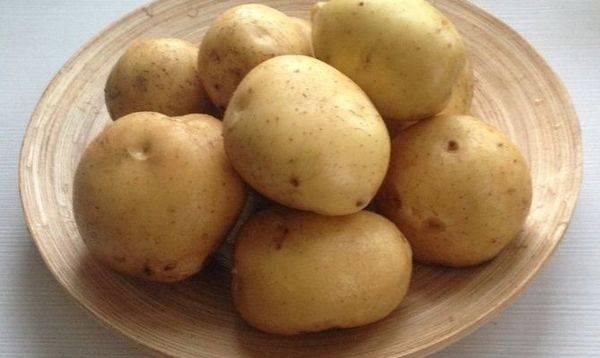 Описание ранних сортов картофеля - фото 20 сортов ранней картошки