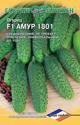 Огурец амур f1: характеристика и описание сорта