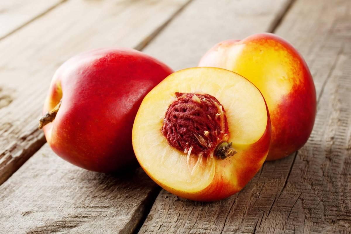 Нектарин: история фрукта, состав, полезные свойства. выращивание нектарина дома
