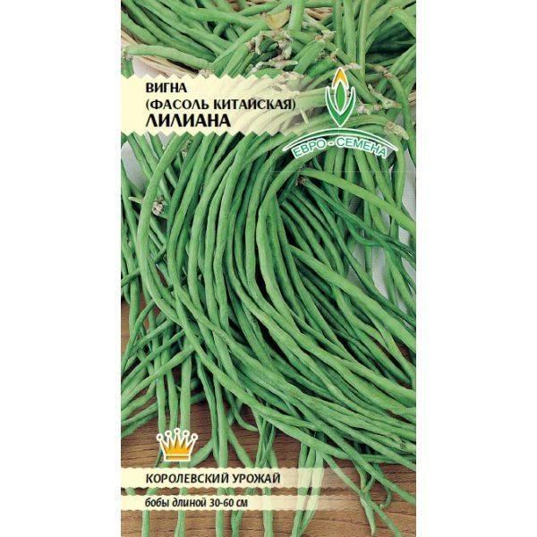 Выращивание и особенности спаржевой фасоли сорта вигна, применение и хранение урожая