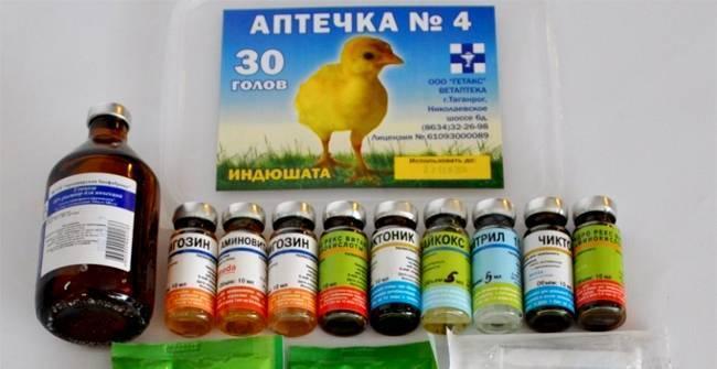 Использование пробиотиков в птицеводстве