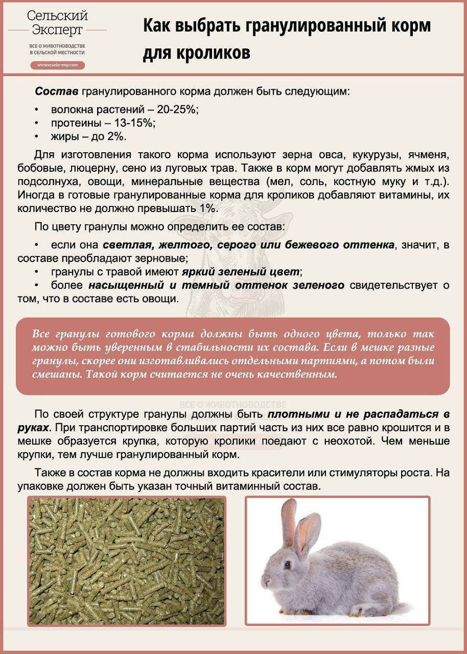 Комбикорм для кроликов: состав, нормы, как давать, рецепт для приготовления своими руками в домашних условиях, лучшие производители