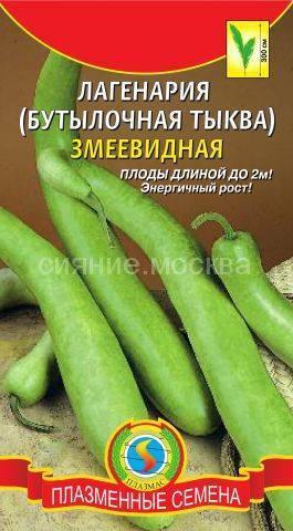 Уникальная тыква — лагенария бутылочная: фото и описание