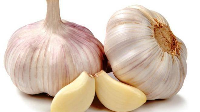 Чем подкармливать чеснок - схема подкормки, уход и выращивание чеснока