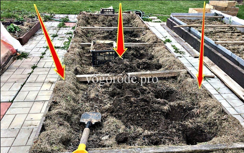 Мульчирование почвы при помощи различных материалов   топ-20 видов мульчи: достоинства и недостатки (фото & видео) +отзывы