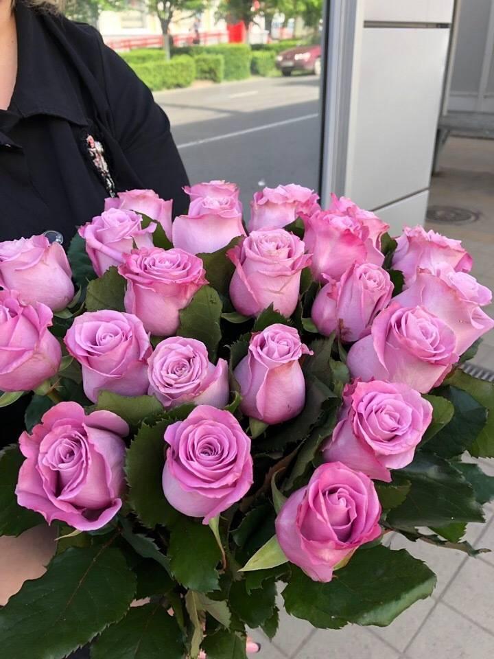 Плетистые розы - описание. классификация, особенности выращивания   о розе