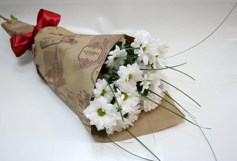 Как вырастить хризантему из букета в домашних условиях? как укоренить? возможно ли размножение черенками? можно ли посадить хризантему в горшок?