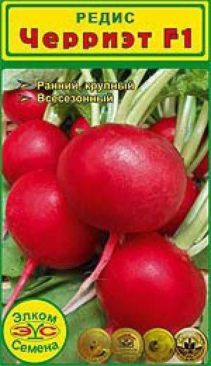 Богатый на витамины и минералы овощ – редис черриэт f1. подробная характеристика и описание сорта