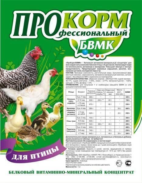 Чем могут болеть куры и цыплята в домашнем хозяйстве?