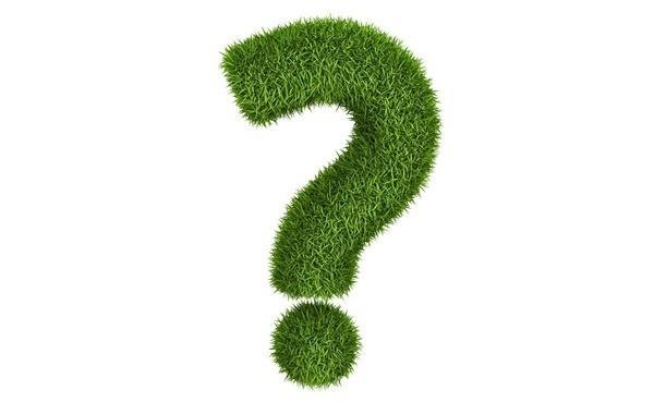 Совместимость укропа с другими культурами на одной грядке. с чем рядом можно сажать зелень?