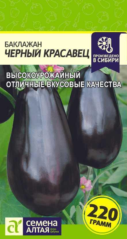 Изучаем сорт баклажан черный красавец