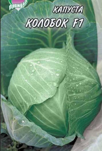 Описание сорта белокочанной капусты колобок