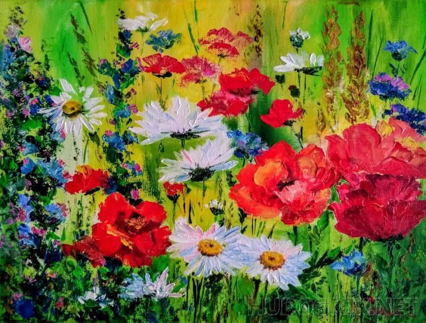 Однолетние цветущие цветы для дачи: фото и названия красивых однолетних цветов, посадка и уход