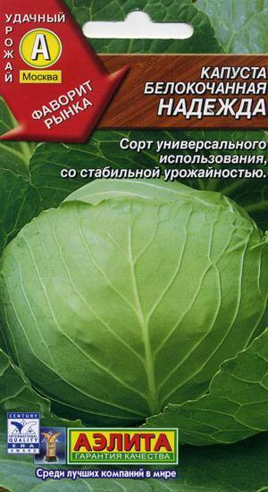 Лучшие сорта поздней капусты для длительного зимнего хранения