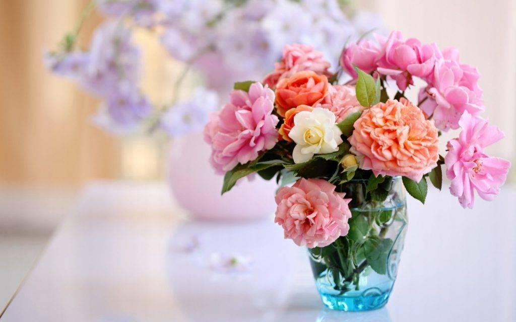 Как долго сохранить розы в вазе: советы садоводов
