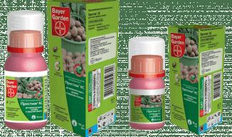 Обработка картофеля перед посадкой от колорадского жука - правила обработки и препараты!