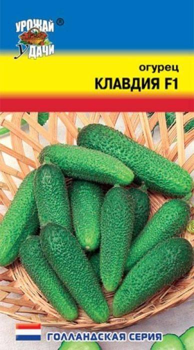 Огурцы клавдия выращивание