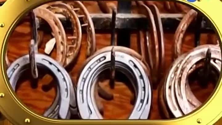Подковы для лошадей: зачем нужны, размеры, виды (резиновые, пластиковые, полиуретановые), как прибивают