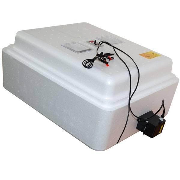 Инкубатор «несушка»: устройство, инструкция и настройка