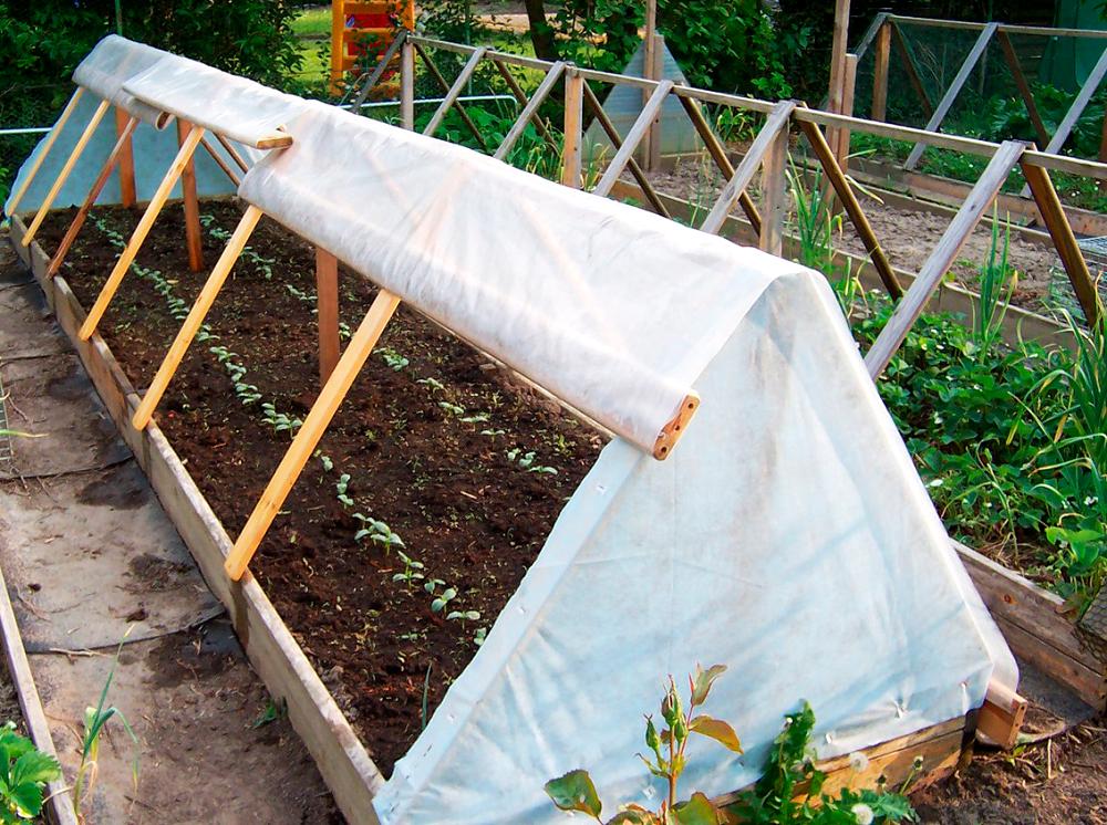 Как в теплице подвязать помидоры: варианты и способы подвязки, приспособления и материалы для подвязывания помидор в теплице из поликарбоната, крепления
