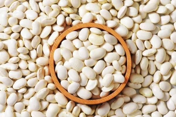 Фасоль лима: что это такое, особенности выращивания