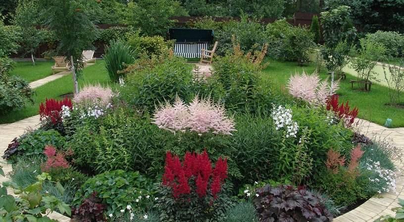 Цветник непрерывного цветения из многолетников: примеры, схемы, цветы, создать постоянно цветущую клумбу на весь сезон