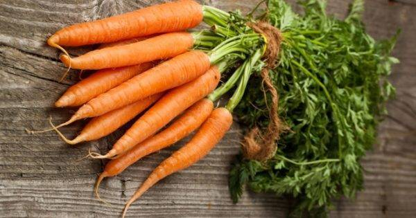 Как сажать гранулированную морковь