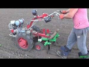 Посадка, прополка, и окучивание картофеля мотоблоком - видео и фото