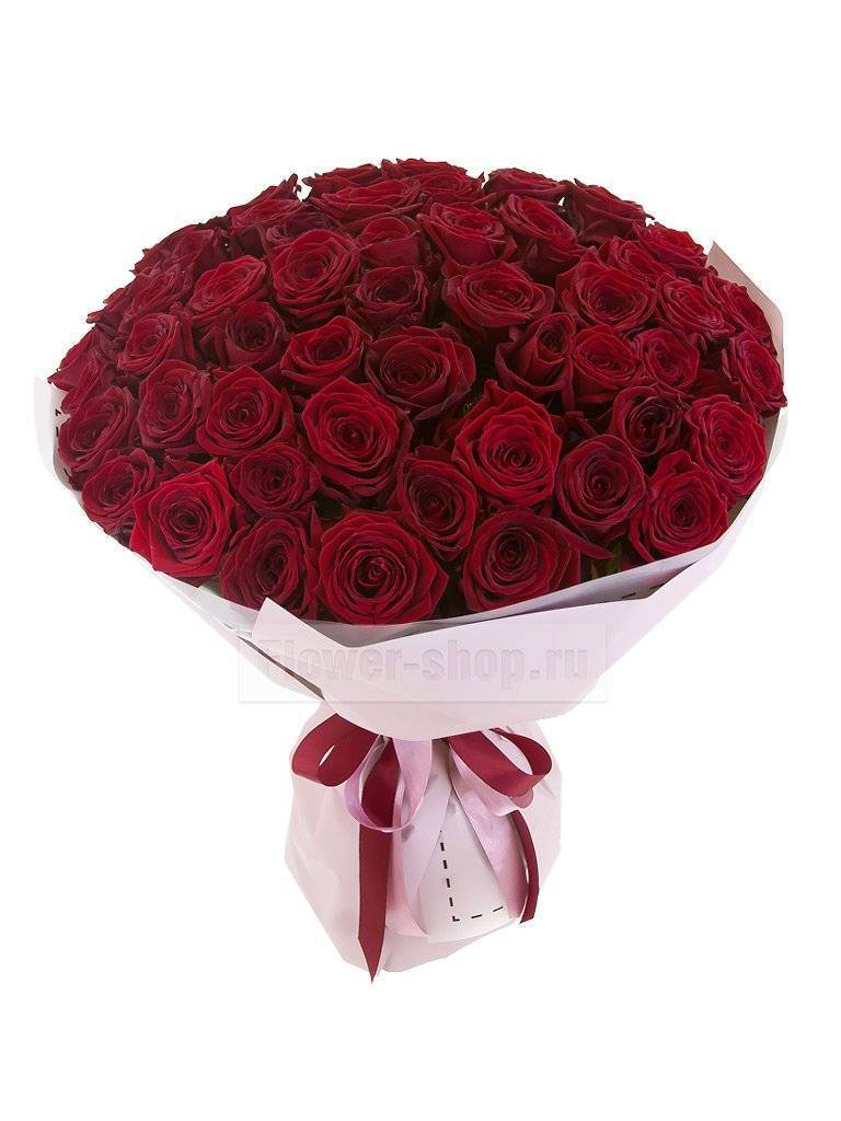 Черные розы — сорта и описания