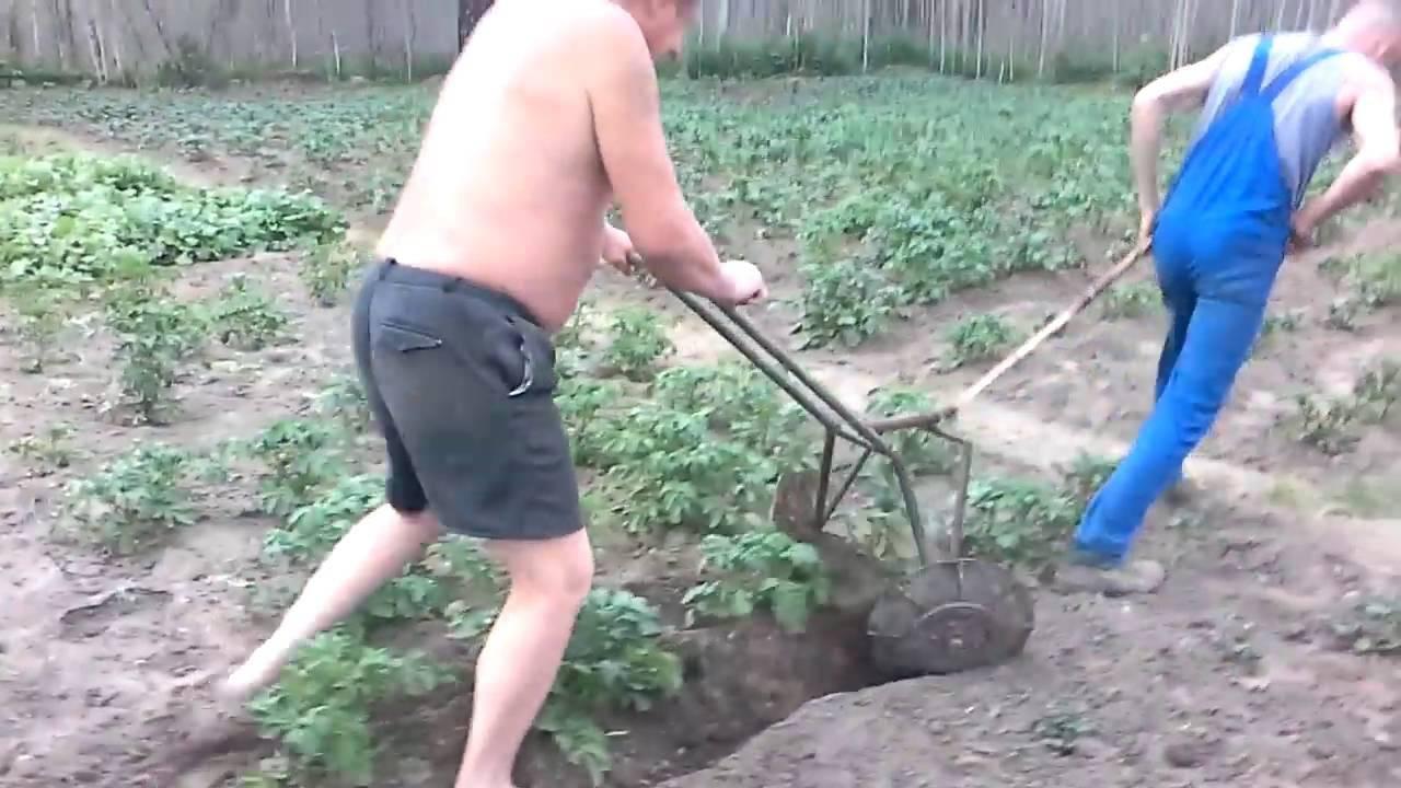Ручной плуг для окучивания картошки. как сделать самодельный окучник для картофеля своими руками? наглядное руководство