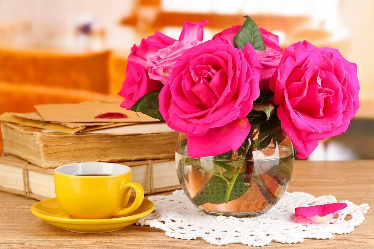 Как сохранить розы в вазе как можно дольше: что нужно добавить в воду