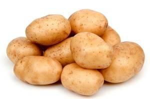 Лучшие сорта картофеля для выращивания в россии