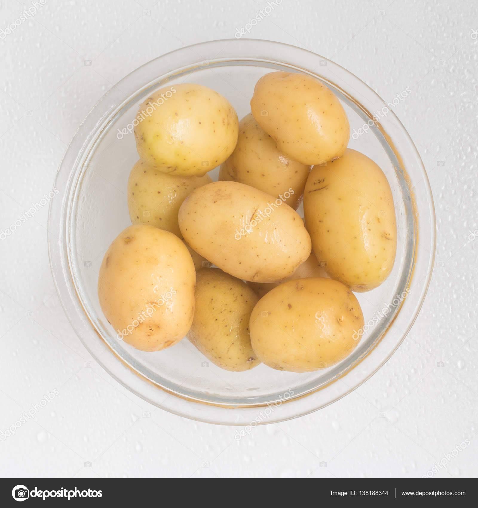 Картофель ред соня: описание и характеристика сорта