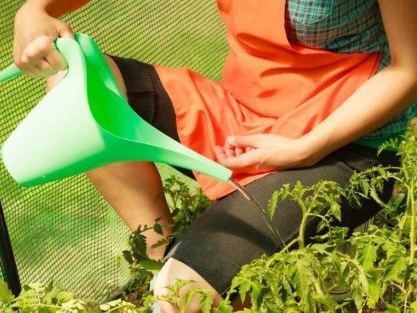 Применение соды в саду и огороде
