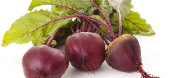 Семена свеклы: лучшие сорта для открытого грунта