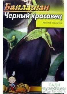 Характеристика и описание сорта баклажана черный красавец, выращивание