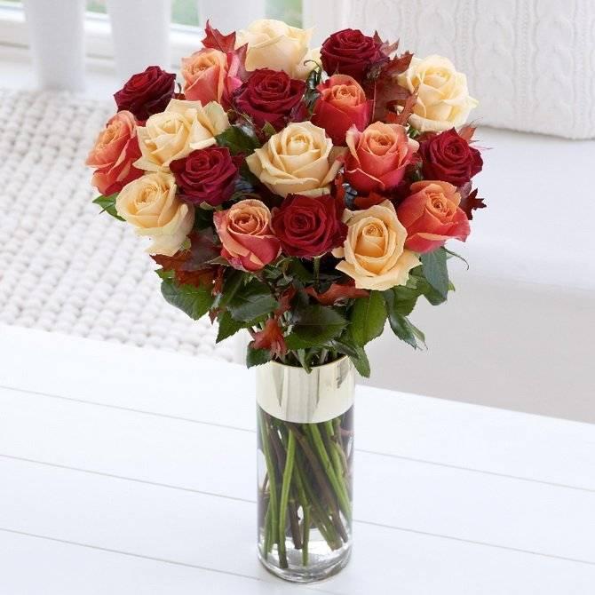 Чтобы розы стояли дольше нужно знать всего 5 действенных секретов
