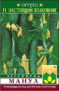 Описание сорта огурцов настоящий полковник — как поднять урожайность