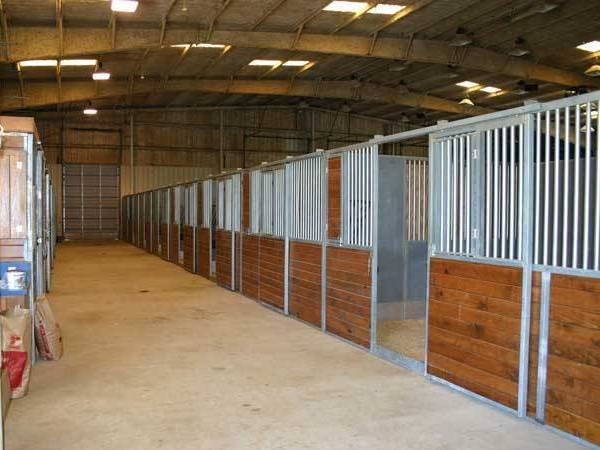 Стандартные размеры денника для лошади. мастер-класс по строительству конюшни и загона для лошадей