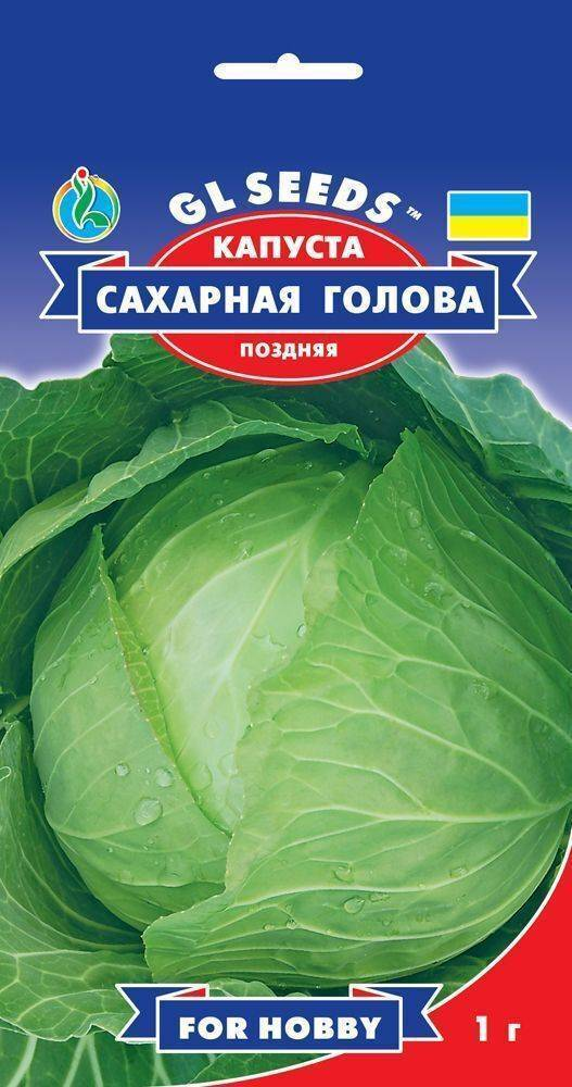 Капуста ринда f1: описание и характеристика сорта, выращивание