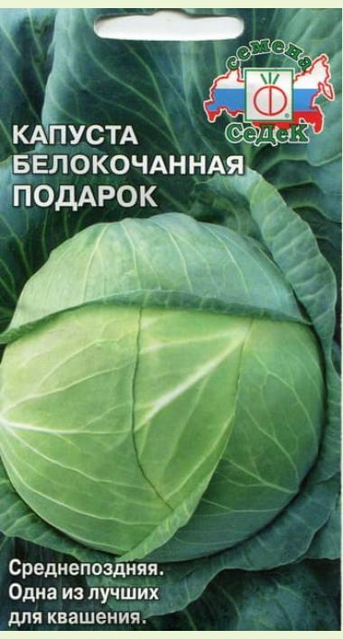 Капуста подарок: описание сорта, особенности выращивания