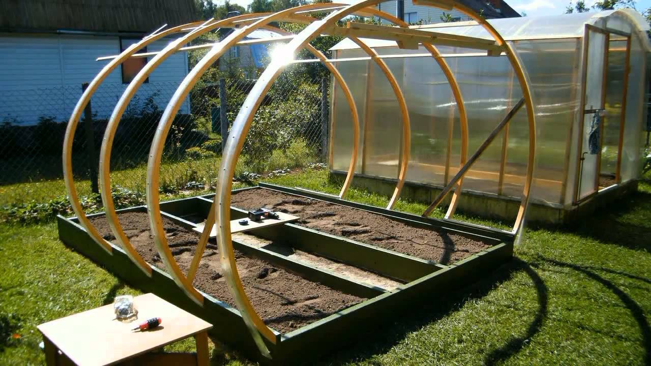 Помидоры в парнике — выращивание от а до я. пошаговая инструкция и советы как вырастить томаты в домашних условиях (95 фото)