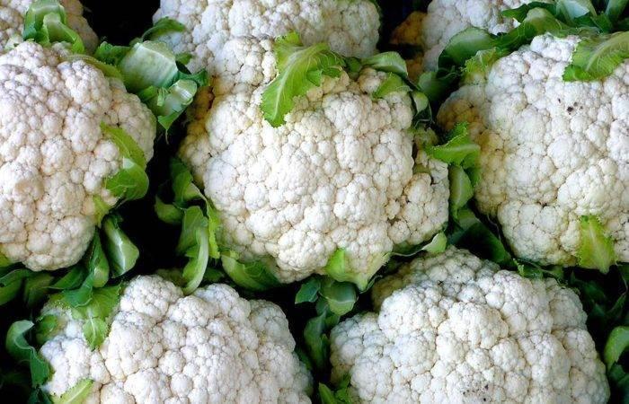 Выращиваем цветную капусту на огороде: вся технология от выбора семян до рецептов блюд