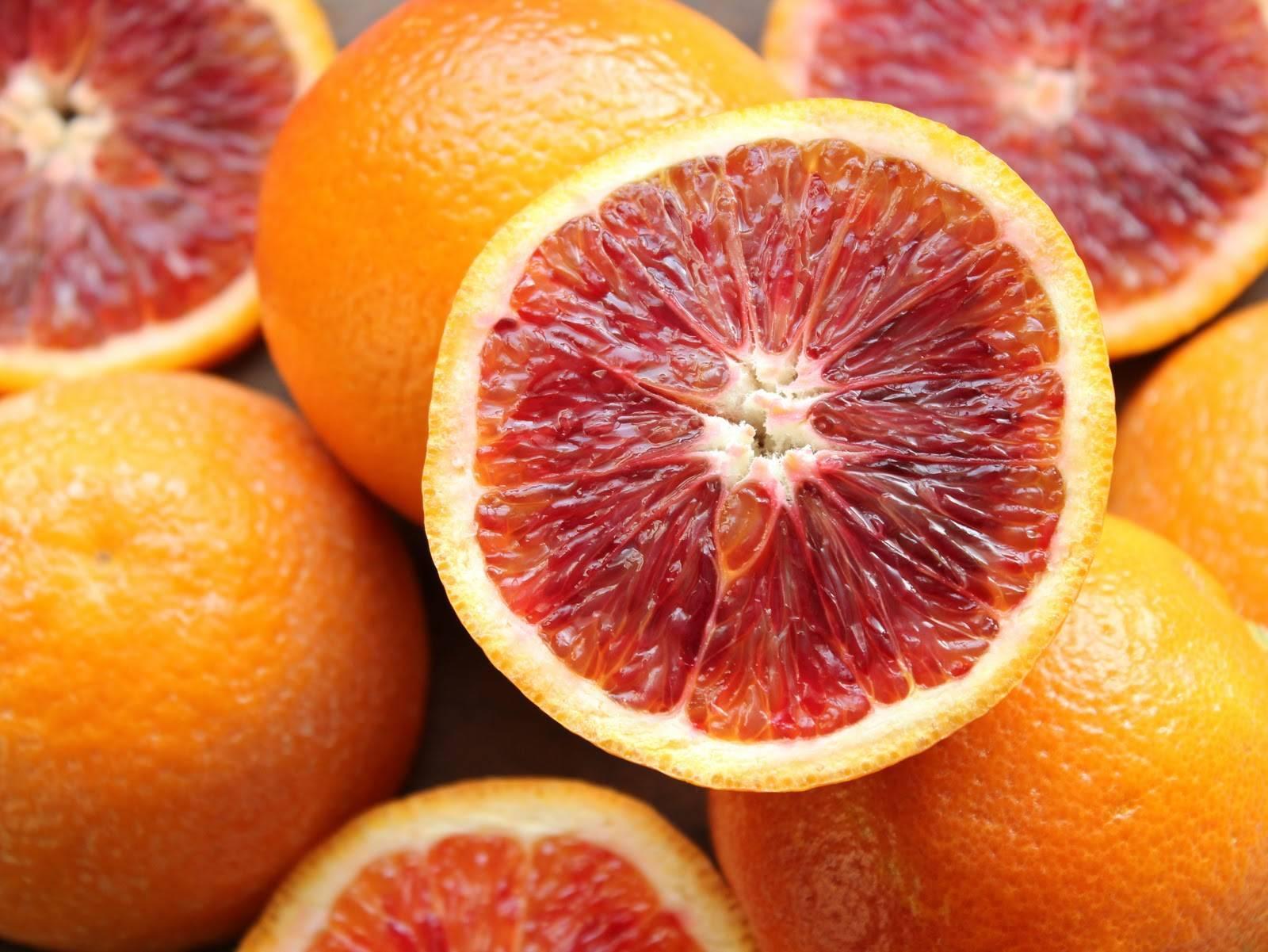 Гибрид красный апельсин — описание и характеристики цитруса