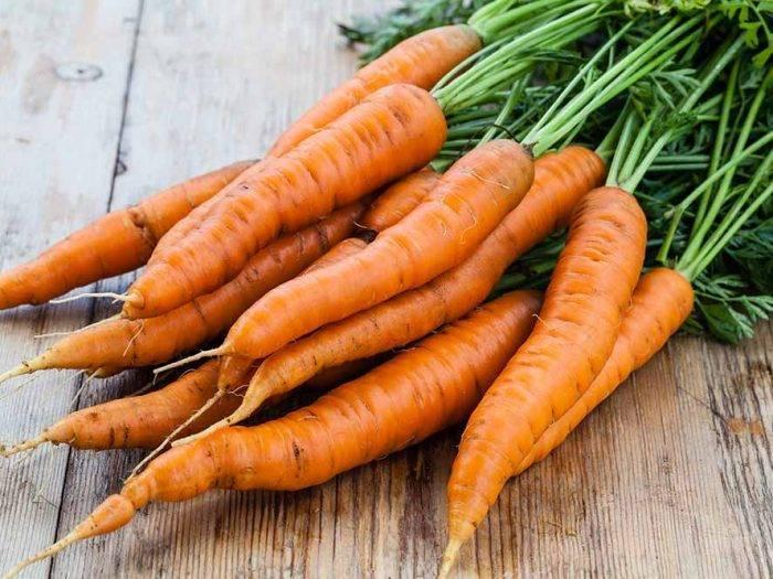 Морковь семена лучшие сорта для сибири