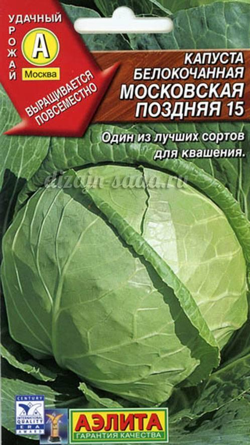 Как подобрать лучший сорт белокочанной капусты?