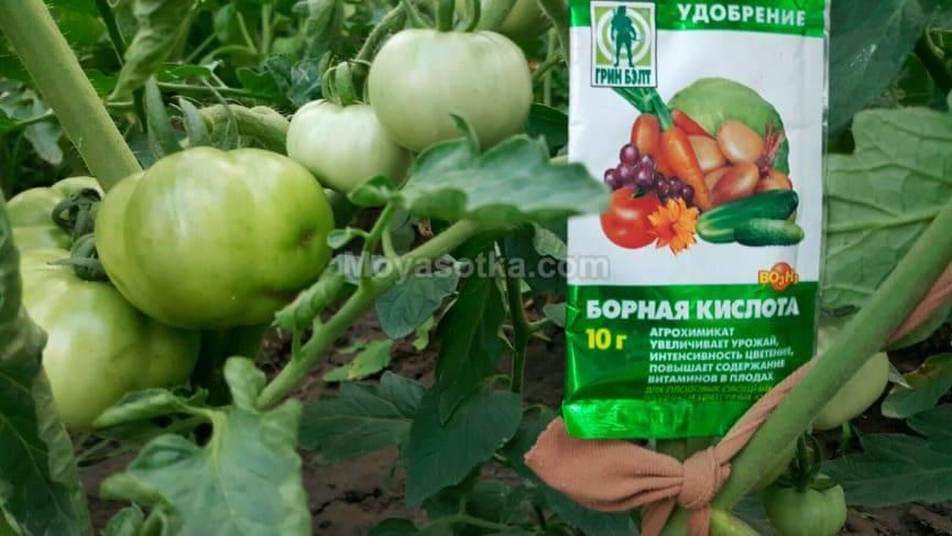 Стоит ли проводить полив томатов борной кислотой? достоинства и недостатки такого применения бора для растений