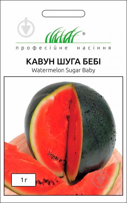 Выращивание арбузов в подмосковье: как выбрать сорт, советы для открытого грунта и теплиц
