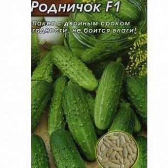 Урожайная находка от беларуских специалистов — огурец верасень f1: характеристика сорта и его описание