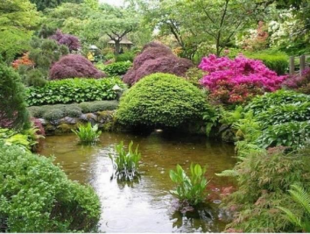Как применить цветок гейхера в украшении сада: композиции, клюмбы